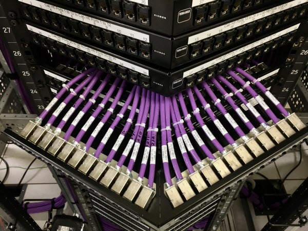 Purple wires connected in server